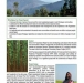 Piloting Payment for Ecosystem Services: The Himalayan Community Carbon Project (HCCP)